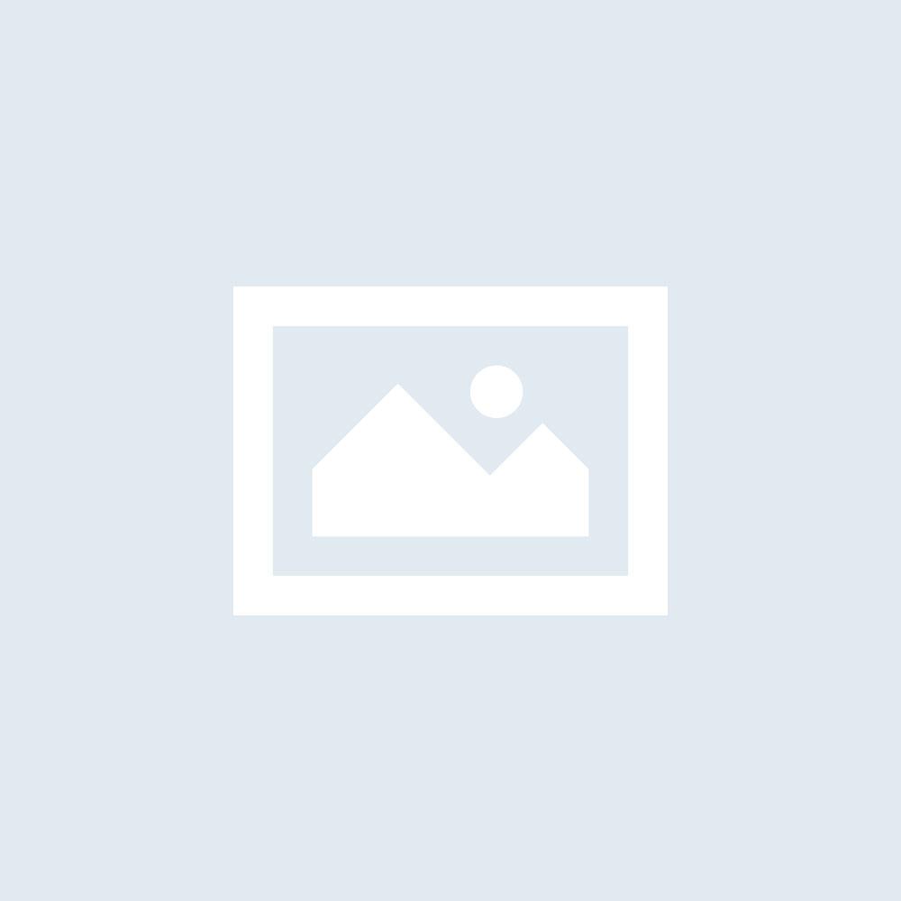 Apicoltura/F. Silvestre